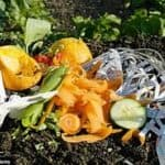 Rubbish Removal: Can I Compost This?